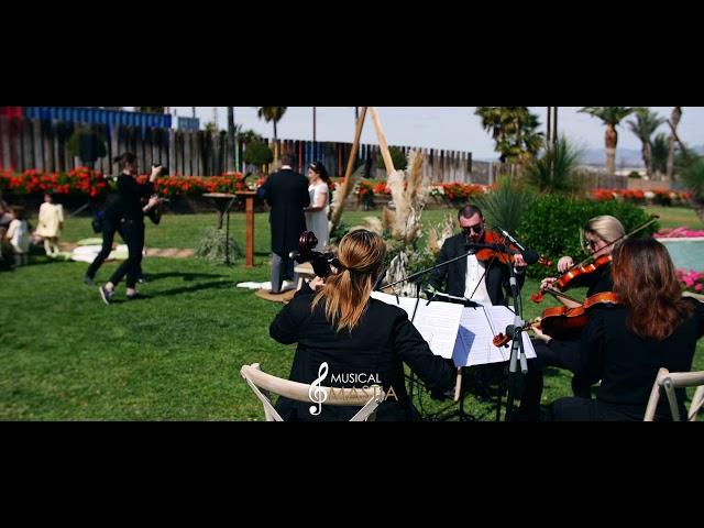 ANILLOS y ARRAS 🥰 | 🟢 Oficiante de Bodas Murcia | Musical Mastia | Maestro de Ceremonias Murcia