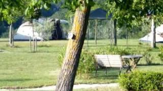 Camping at Agricamp Picobello, Montelparo, Le Marche