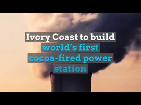 Ivory Coast to build world's first cocoa fired power station - Africa OnTheRise