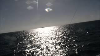 Рыбалка на Кубе. Варадеро . CubaGood.com(Видео о Кубе, путешествиях, Карибском море и Атлантическом Океане, Гаване, Варадеро. Video about Cuba, travel, Caribbean..., 2014-01-13T19:42:11.000Z)