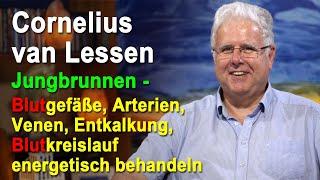 Jungbrunnen - Blutgefäße, Arterien, Venen, Entkalkung energetisch behandeln | Cornelius van Lessen