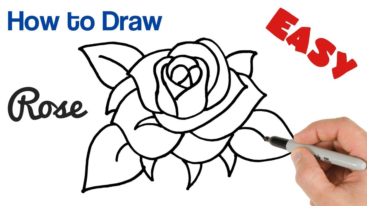 How to Draw a Rose Super Easy Art Tutorial Step by Step for Beginners - YouTube
