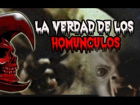 LA VERDAD SOBRE LOS HOMUNCULOS (Todo lo que necesitas saber) @OxlackCastro