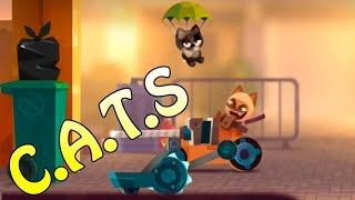 Клановая битва! CATS Crash Arena \ Коты строители - Битва котов, игра на андроид