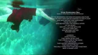 Wide Sargasso Sea  - w/ lyrics ~ STEVIE NICKS