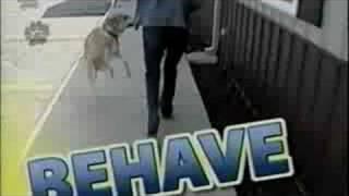 Kirk L. Gillette M.a. - Kalamazoo Michigan - Dog Trainer