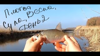 Сула ранняя весна первая рыбалка День 2
