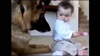 ТОП февраль 2015, лучшие приколы с детьми, отжал у собаки косточку, угар, ржач, юмор