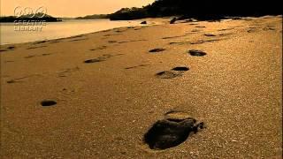 トア・エ・モアの「誰もいない海」(1970)をアップします。 コメントやア...