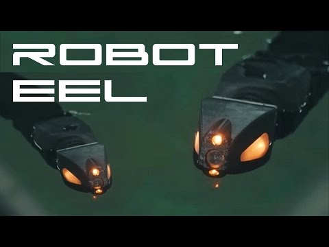 Robot Eel - Behold The Future