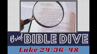 Brief Bible Dive Luke 24:36-48 Becoming More Real