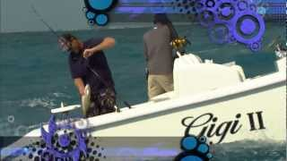 "Into The Blue: ""ISLAMORADA REEF FISHING"" 2012 : Season 4 Episode 11"