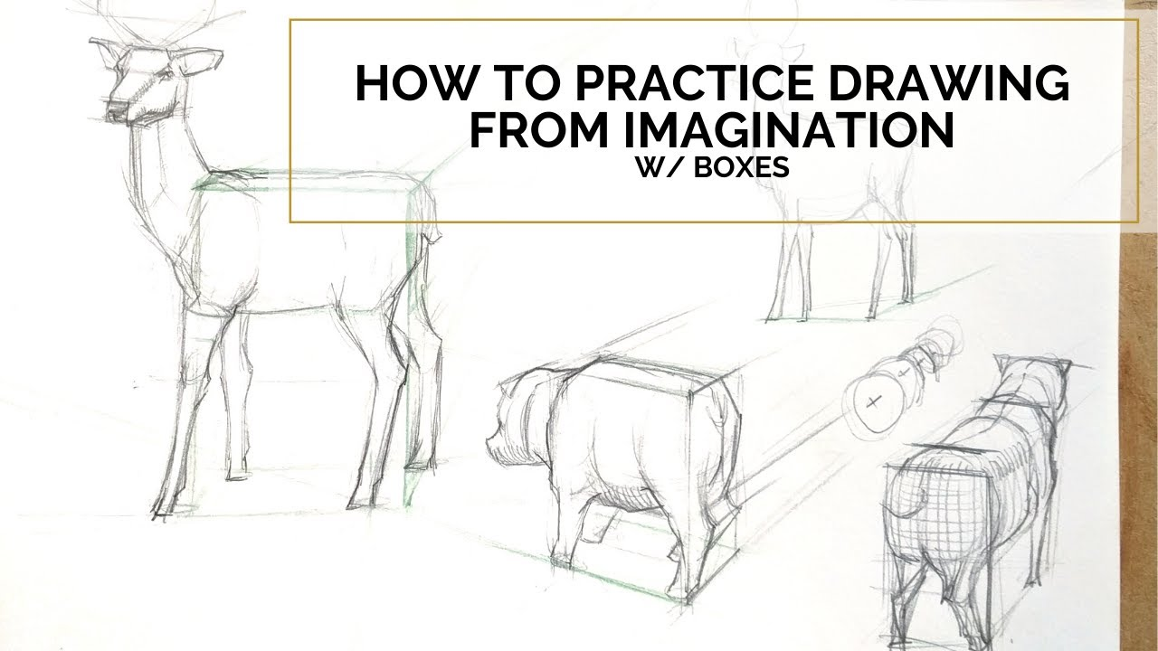 How to practice drawing from imagination Part 3