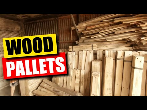 Wood pallets for DIY | VLOG 012