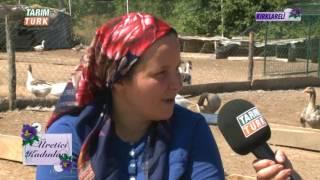 Gambar cover Üretici Kadınlar Yeni Sezon   Kaz Yetiştiriciliği   TARIM TÜRK TV