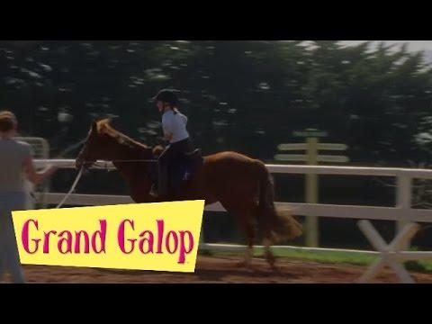 Galop 1 savoir galoper assis ou en quilibre doovi - Grand galop le cheval volant ...