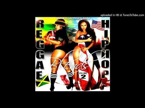 Djaytiger's Reggae HipHop Blends Vol 2
