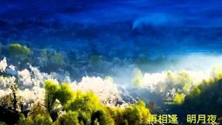 春風撩人醉 - 張露 Chang Loo