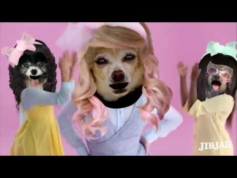 ALL ABOUT THAT BASS  Celebrity DOGS Version Woof!