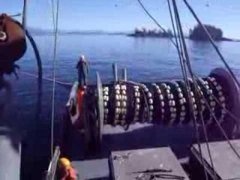 Fishing Sardines on the west coast of Vancouver Island 2012