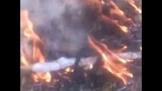 Pashtun people of khyber Pakhtunkhwa burn the punjabi-pakistani flag