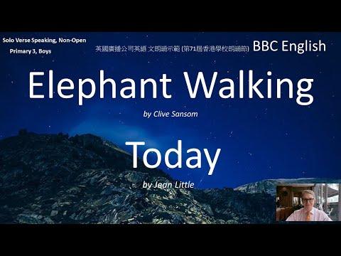 elephant-walking,-today;-71st-hong-kong-speech-festival-2019-(第71屆香港學校朗誦節)