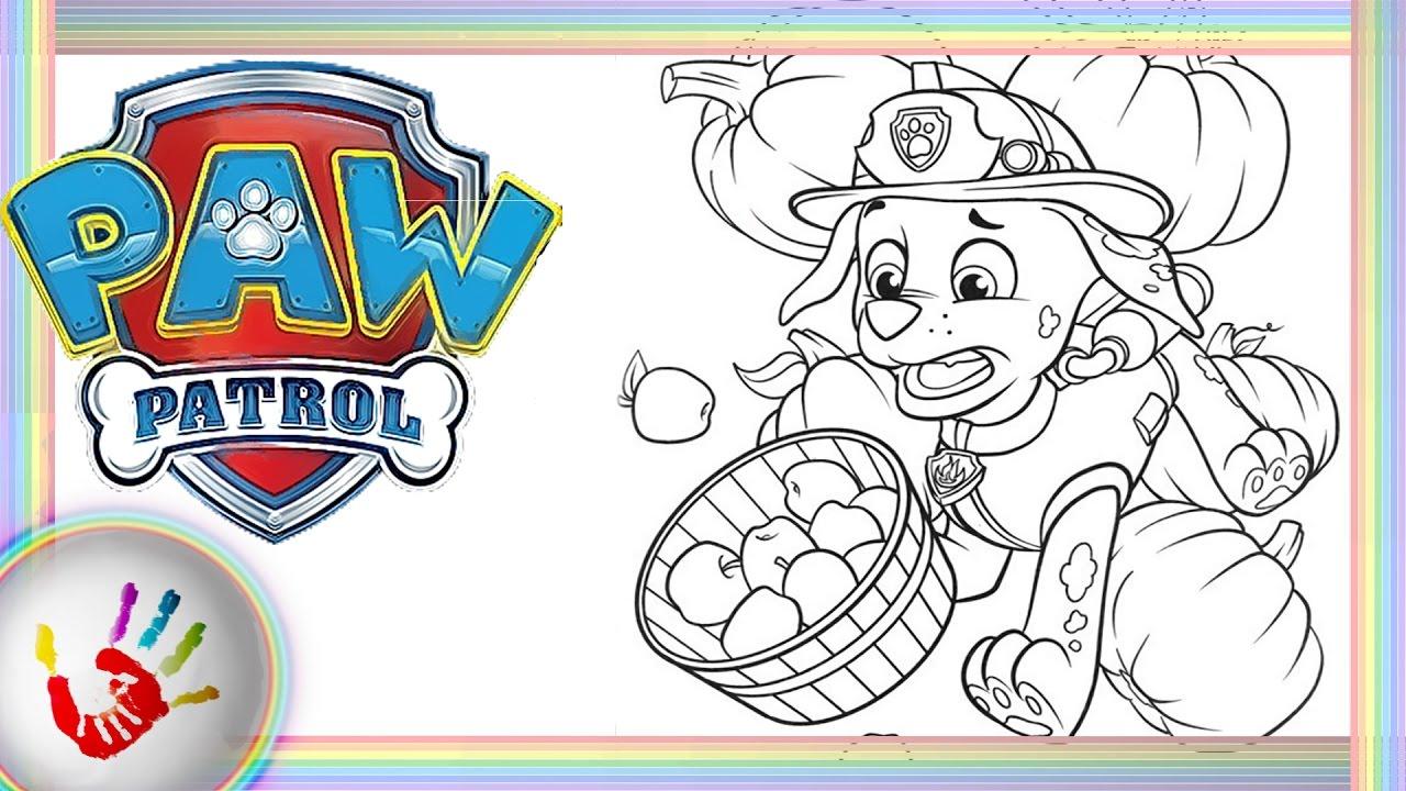 Paw Patrol Marshall Coloring - Paw Patrol Coloring Book ...
