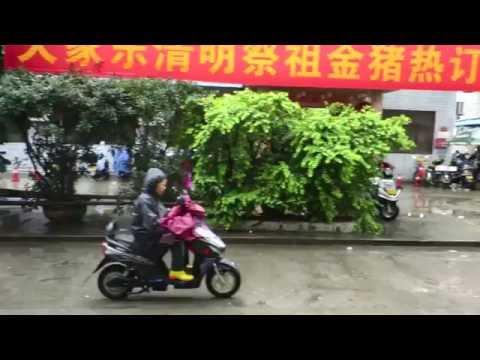 CHINA: Zhonshan (中山) Tour 2016