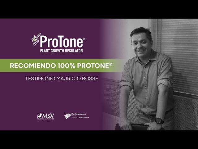 Protone® | Testimonio Mauricio Bosse