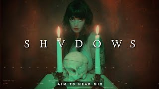 Dark Hardwave / Witch House Mix 'SHVDOWS'