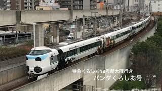 パンダくろしお号@特急くろしお18号新大阪行き