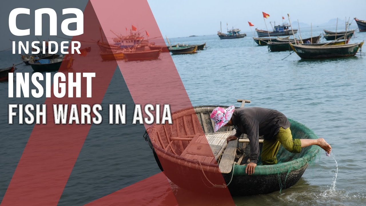 South China Sea Dispute: The War On Fishing Rights | Insight | Politics