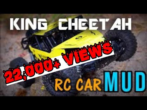 The King Cheetah High Speed Rc Car In Mud Youtube