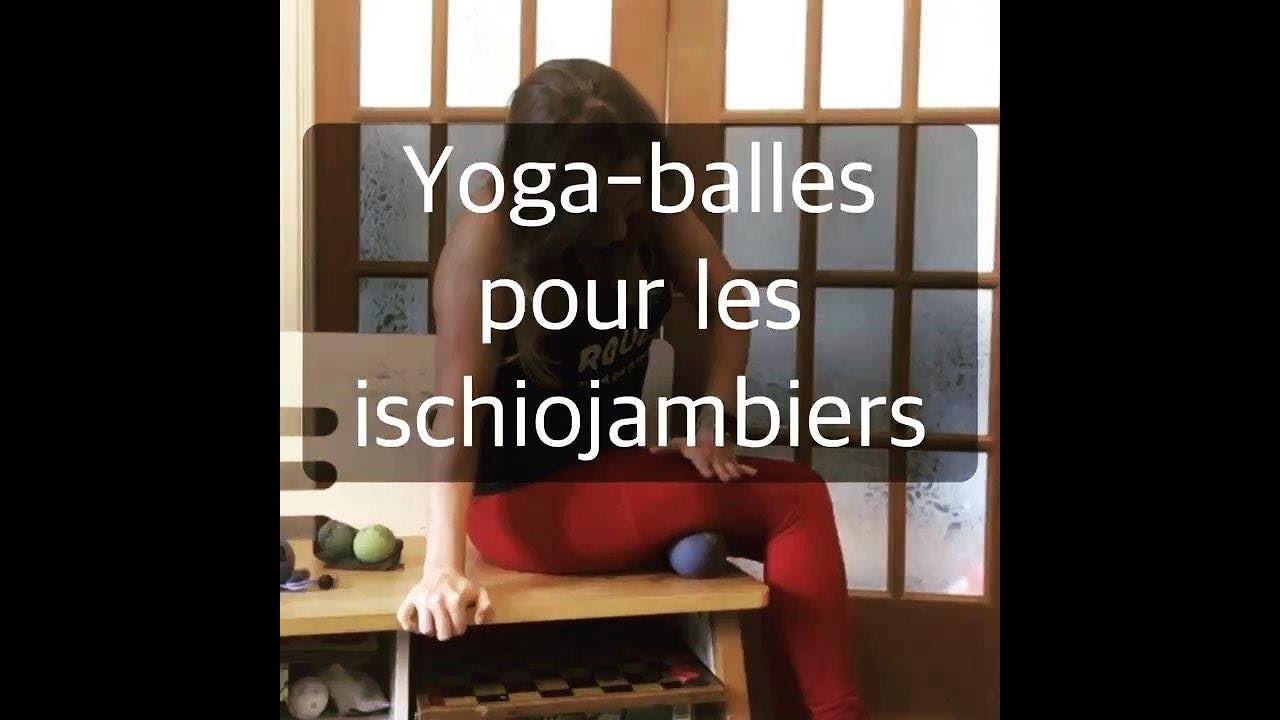 Videos Yogami