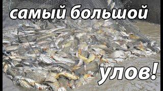Рыбалка Кастинговой Сетью самые большие уловы лучшее CAST NET TOP 5