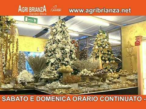 Natale agri brianza 2011 youtube for Agri brianza natale