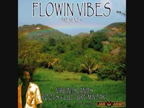 VIRGIN ISLANDS ROOTS AND CULTURE MIX PART 1 - MIXED BY FLOWIN VIBES