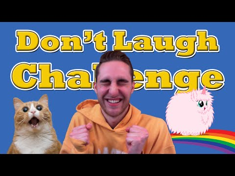 Gamer Tries The Don't Laugh Challenge