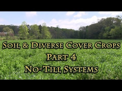 Soil & Diverse Cover Crops Part 4 No-Till Systems