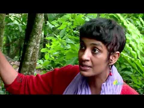 Agricultural Biodiversity Community - Gurukula