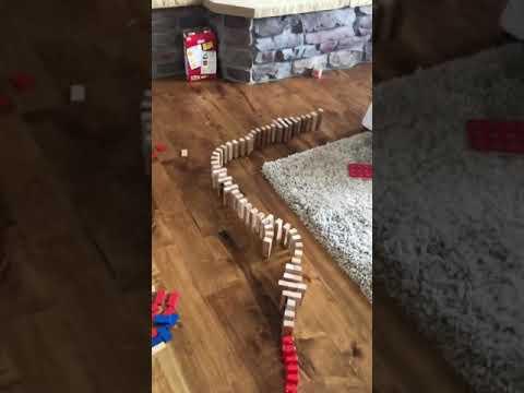 Mega-Domino Success - YouTube