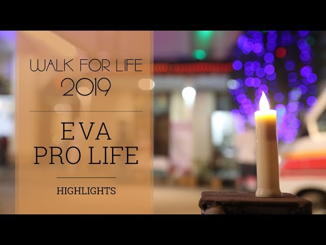 Pro life | Walk for Life 2019 | Highlights