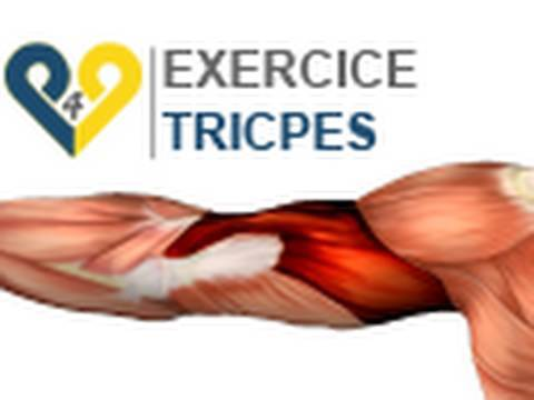 Exercices Musculation Triceps  Repulsion 2 bancs - YouTube d322e6f5cfd