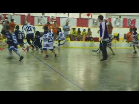 Winnipeg Aboriginal Sport Achievement Centre given game-used NHL/AHL sticks