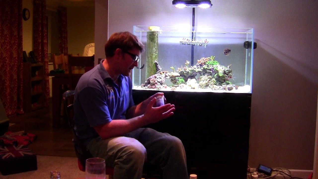 Freshwater fish tank alkalinity - Ca Mg And Alkalinity Why Do We Need These Trace Elements Acresaquatics Fish Keeping