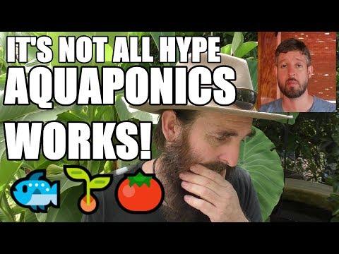My Aquaponic Delusion | Why Aquaponics Makes Sense to Me
