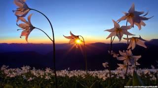Madonna - Ray Of Light (InFiction 'Morning' Remix)