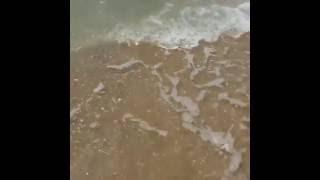 Анапа, песчаный пляж, море у берега, июнь 2016(Новые фото Анапы http://vk.com/kurortanapa., 2016-06-06T10:36:04.000Z)