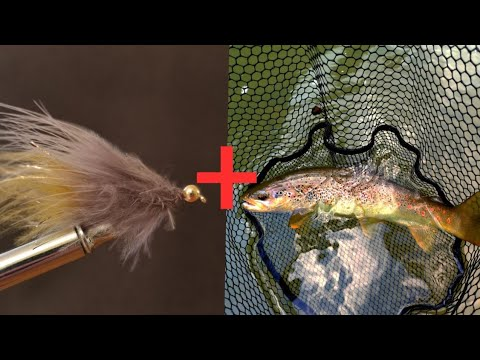 """How To Tie A Trout Streamer?+ Fly Fishing For Big Trout """"Let's Test Him"""""""