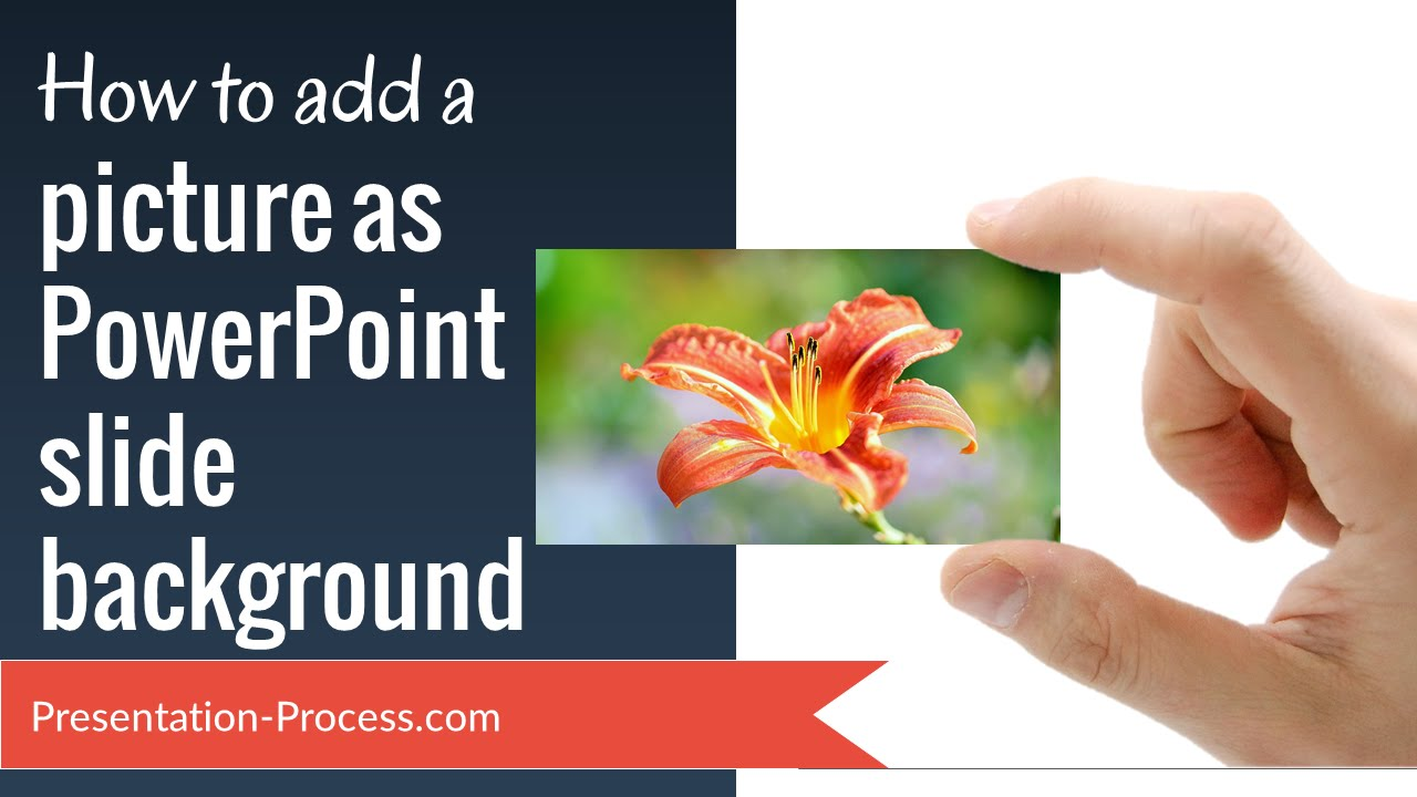 how to add a picture as powerpoint slide background youtube